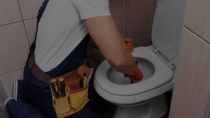 Hallandale Plumbing Services | Plumbers in Hollywood, FL - unclogged toilet