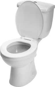 Hallandale Plumbing Services | Plumbers in Hollywood, FL - Toilet