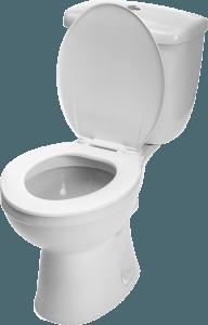 Hallandale Plumbing Services | Plumbers in Hollywood, FL - Toilet